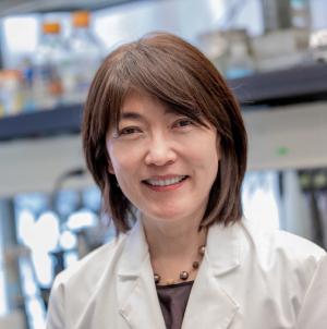 Jiyoung Lee, PhD