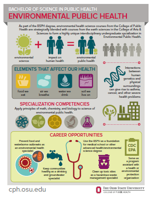 bsph environmental health infographic