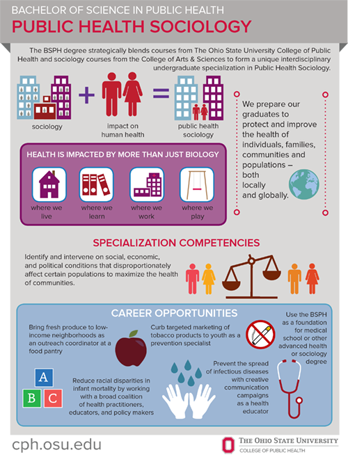 bsph sociology infographic