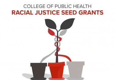 seed grants graphic
